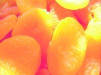 Apricots-low-res